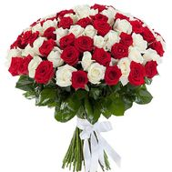 101 red and white rose - flowers and bouquets on roza.kharkov.ua