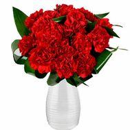Букет гвоздик для девушки - цветы и букеты на roza.kharkov.ua