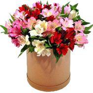 Красивая коробка с альстромериями - цветы и букеты на roza.kharkov.ua
