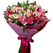 Buy Alstroemeria Kharkov - flowers and bouquets on roza.kharkov.ua