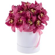 Orchids in a Hat Box - flowers and bouquets on roza.kharkov.ua