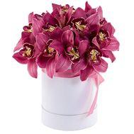 Орхидеи в шляпной коробке - цветы и букеты на roza.kharkov.ua
