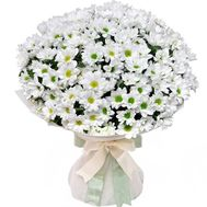 A chic bouquet of chamomiles - flowers and bouquets on roza.kharkov.ua