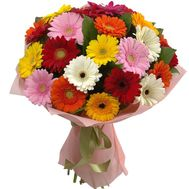 Amazing bouquet of gerberas - flowers and bouquets on roza.kharkov.ua