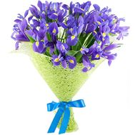 Beautiful bouquet of irises - flowers and bouquets on roza.kharkov.ua