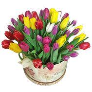 51 разноцветный тюльпан в коробке - цветы и букеты на roza.kharkov.ua