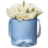 White tulips in a hat box - flowers and bouquets on roza.kharkov.ua