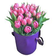 Коробка розовых тюльпанов - цветы и букеты на roza.kharkov.ua