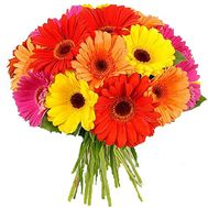 Bouquet of gerberas - flowers and bouquets on roza.kharkov.ua