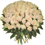 101 cream-colored roses - flowers and bouquets on roza.kharkov.ua
