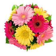 Bouquet of gerberas flowers - flowers and bouquets on roza.kharkov.ua