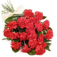 Bouquet of carnations - flowers and bouquets on roza.kharkov.ua