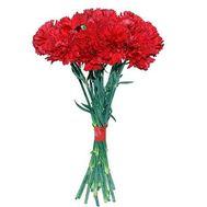 Каскадный букет гвоздик - цветы и букеты на roza.kharkov.ua