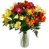 Букет из 19 разноцветных альстромерий - цветы и букеты на roza.kharkov.ua