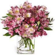 Букет из 25 розовых альстромерий - цветы и букеты на roza.kharkov.ua