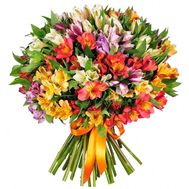 Bouquet of 35 alstromeries - flowers and bouquets on roza.kharkov.ua