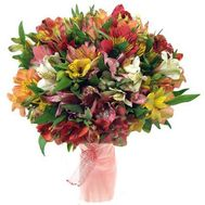 Bouquet of 51 alstroemerias - flowers and bouquets on roza.kharkov.ua