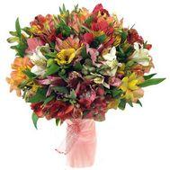 Букет из 51 альстромерии - цветы и букеты на roza.kharkov.ua