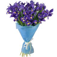 Bouquet of irises - flowers and bouquets on roza.kharkov.ua