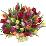 Bouquet of multicolored tulips - flowers and bouquets on roza.kharkov.ua