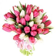 Bouquet of Tulips - flowers and bouquets on roza.kharkov.ua