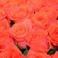 Orange roses by the piece - flowers and bouquets on roza.kharkov.ua