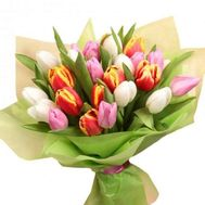 Tulips with delivery - flowers and bouquets on roza.kharkov.ua