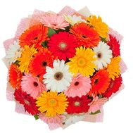 Букет гербер - цветы и букеты на roza.kharkov.ua