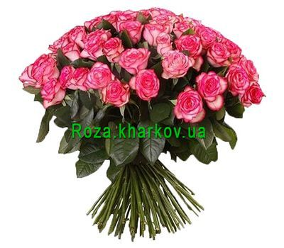 """""""101 джамиля"""" в интернет-магазине цветов roza.kharkov.ua"""