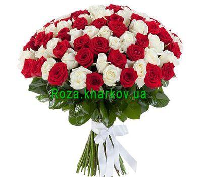"""""""101 красная и белая роза"""" в интернет-магазине цветов roza.kharkov.ua"""