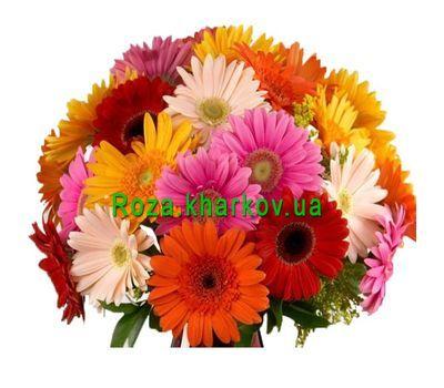 """Wonderful bouquet of gerberas"" in the online flower shop roza.kharkov.ua"