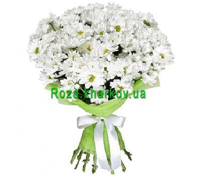 """""""Красивый букет ромашек"""" в интернет-магазине цветов roza.kharkov.ua"""