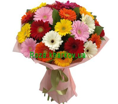 """Amazing bouquet of gerberas"" in the online flower shop roza.kharkov.ua"