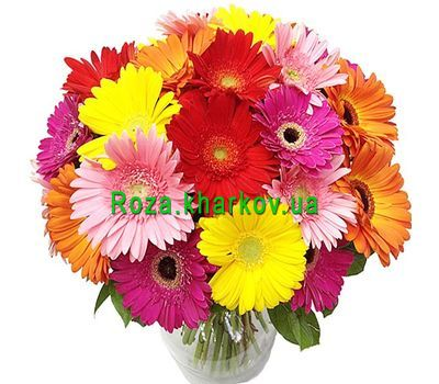 """Bright bouquet of gerberas"" in the online flower shop roza.kharkov.ua"