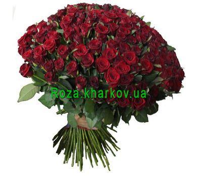 """251 красная роза"" в интернет-магазине цветов roza.kharkov.ua"