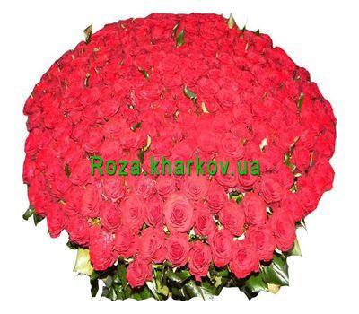 """501 красная роза"" в интернет-магазине цветов roza.kharkov.ua"