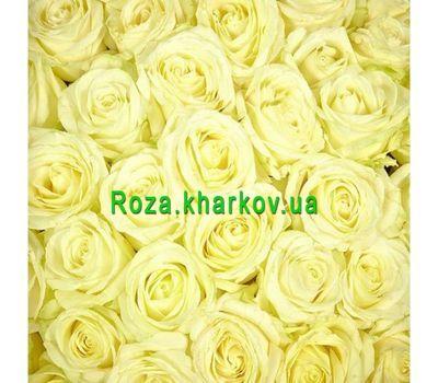"""""""Белые розы поштучно"""" в интернет-магазине цветов roza.kharkov.ua"""