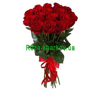 """15 Roses Bouquet Bouquet"" in the online flower shop roza.kharkov.ua"