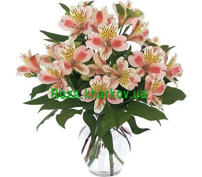 """Bouquet of 9 alstromeries flowers"" in the online flower shop roza.kharkov.ua"