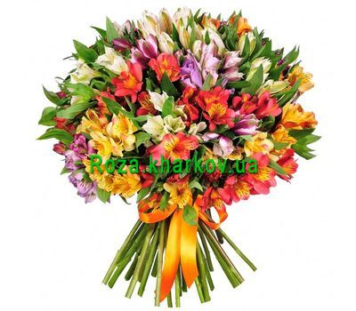 """Bouquet of 35 alstromeries"" in the online flower shop roza.kharkov.ua"