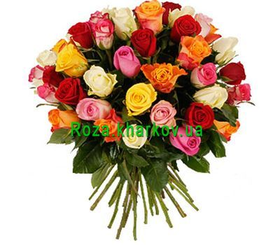 """Bouquet of 41 roses"" in the online flower shop roza.kharkov.ua"