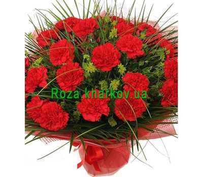 """Bouquet of carnations"" in the online flower shop roza.kharkov.ua"