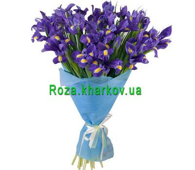 """Bouquet of irises"" in the online flower shop roza.kharkov.ua"