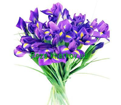 """Bouquet of blue irises"" in the online flower shop roza.kharkov.ua"