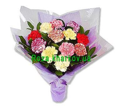 """""""Bouquet of multicolored carnations"""" in the online flower shop roza.kharkov.ua"""