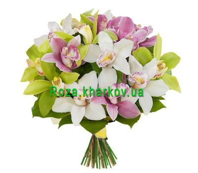 """Bouquets of orchids"" in the online flower shop roza.kharkov.ua"
