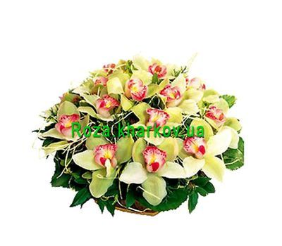 """Basket of flowers from orchids"" in the online flower shop roza.kharkov.ua"