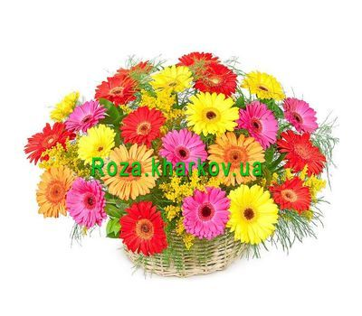 """Basket of gerberas"" in the online flower shop roza.kharkov.ua"