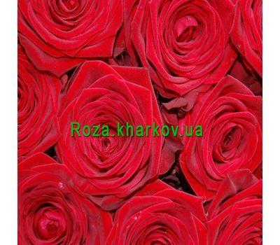 """""""Красные розы поштучно"""" в интернет-магазине цветов roza.kharkov.ua"""