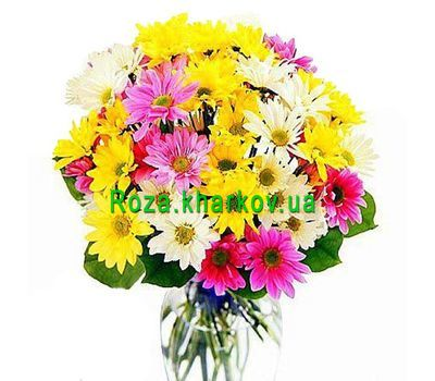 """Buy chrysanthemums"" in the online flower shop roza.kharkov.ua"